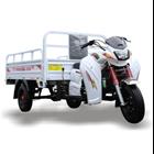 Motor Roda Tiga Perkasa New 200 NX Niaga 2