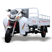Three Wheel Motorcycle Mighty New 200 NX Niaga