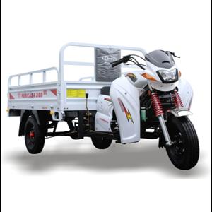 Dari Motor Roda Tiga Perkasa New 200 NX Niaga 1