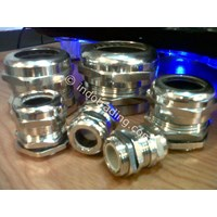 Cable Gland Stainless Steel Type PG 1