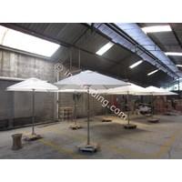Umbrella Canopi