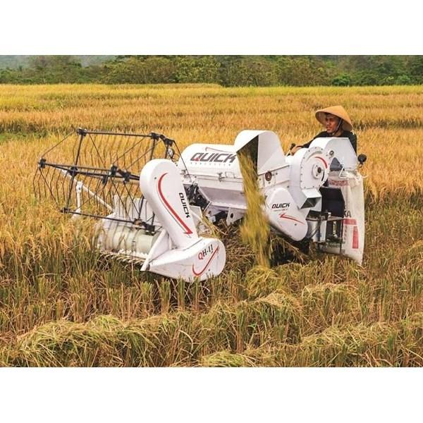 Mesin Pemanen Padi Murah (Combine Harvester)