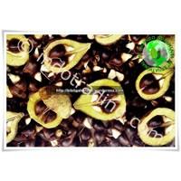 Jual Bibit Gaharu (Agarwood) Aquilaria Malaccensis Kalimantan 2