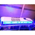 Lampu Strobo LED Dashboard 12V 6