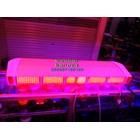 Lampu Strobo LED Dashboard 12V 5