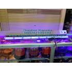 Lampu Strobo Polisi Senken TBD 2000 1