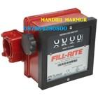 Flow meter dan Indikator Suhu FILL RITE 4 Digit FR901CL1.5 1