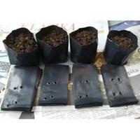 Distributor Kantong Plastik Semai Bibit Tanaman 30 cm x 30 cm x 0.05 mm 3