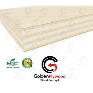 Plywood (Triplek) 18 Mm