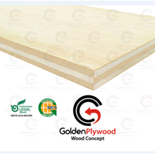 Golden Plywood Wood Concept 9 mm