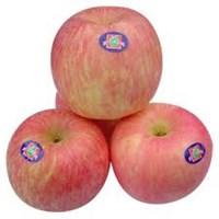 Jual Apel Qinguan