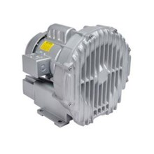 Gast Regenerative Side Channel Blower R 4110-2