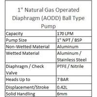 AODD Ball Type Pump 1 Inch Natural Gas  1