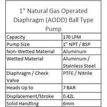 AODD Ball Type Pump 1 Inch Natural Gas