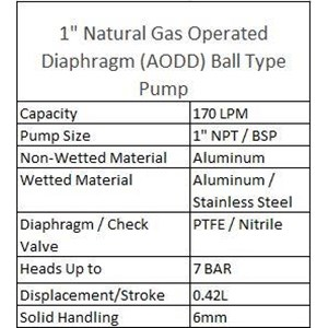 AODD Ball Type Pump 1 Inch Natural Gas