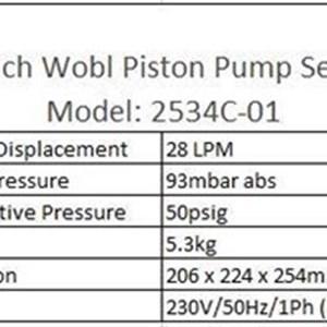 Welch Wobl Piston Pump Model  2534C-01