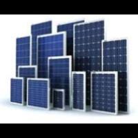 Beli Poly Crystalline Solar Panel 260 Wp 4