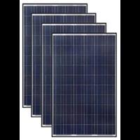 Poly Crystalline Solar Panel 260 Wp 1