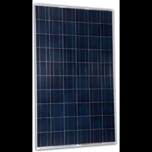 Panel Tenaga Surya / Solar Panel 260Wp