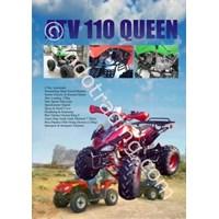 Atv 110 Queen Motor 1