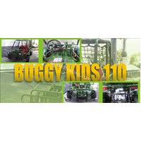 Jual Buggy Kids 110