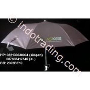 Fold Umbrella Silver