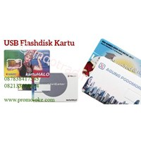 01 promotional card usb