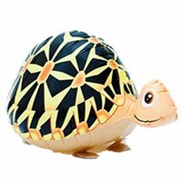 Jual Turtle Walking Pet ( Mainan Plastik )