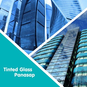 Tinted Glass / Panasap