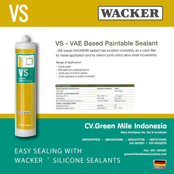 Silikon Kaca Paintable Sealant Vs