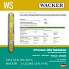 Silikon Kaca / Weatherseal Superior  1