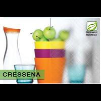 Textured Glass - CRESSENA 5mm