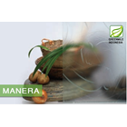 Kaca Interior Tekstur - MANERA 5mm 2