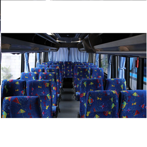 Bus Royal Platinum Micro 29 seats