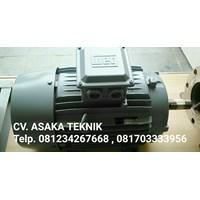 elektro motor horizontal 1