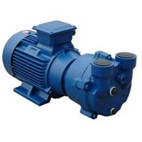 Liquid Ring Vacuum Pump - Compressor 2Bv Series 1