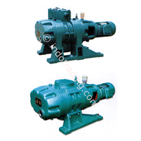 Zj / Zjp Roots Vacuum Pump 1