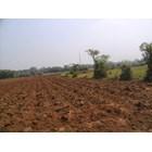 Hydroponics Nutrition Bion-Up Fertilizer Pupuk Kujang Cikampek Non-Subsidized Fertilizer 3