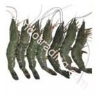 Shrimp Pancet (20 To 30) 1