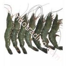 Shrimp Pancet (20 To 30)