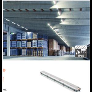 Damp-Proof LED Luminaires