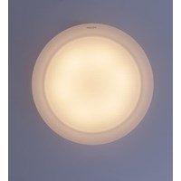 Jual Lampu LED Philips 33370 Ceiling L10W 2700k/6700k 2