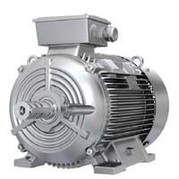 Jual Electric Motor 3 Phase Siemens 1Le0102 Series 2