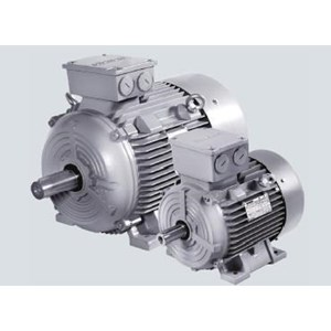 Electric Motor 3 Phase Siemens 1Le0102 Series