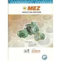 Electro Motor Mez