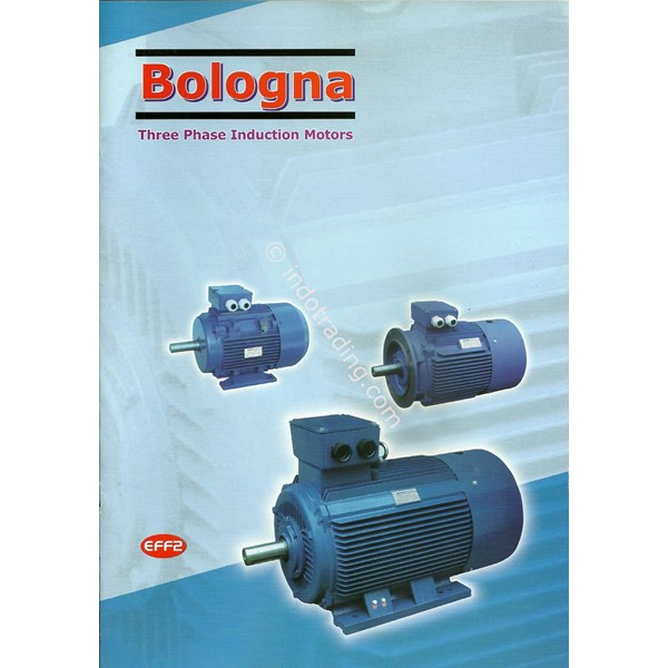 Dinamo Motor Bologna