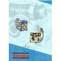 Hollow Shaft Reducer Bologna
