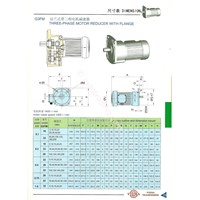 G3lm 3Phase Motor Reducer With Flange