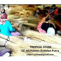 Jual High Quality Palm Ekel Broom Sticks - Lidi Sapu Indonesia 2