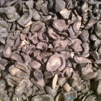 Palm Kernel Shell For Biomass Industry Solar Industri Cangkang Sawit 1